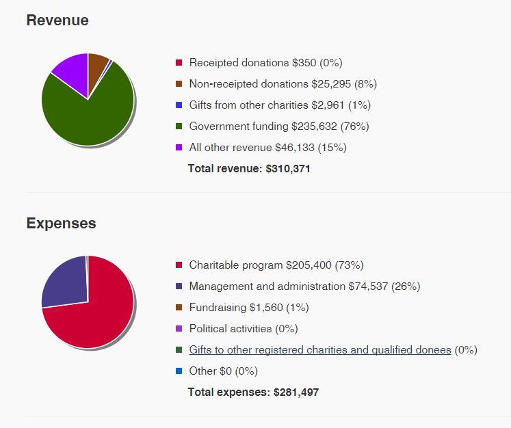 pie chart of revenues and expenses